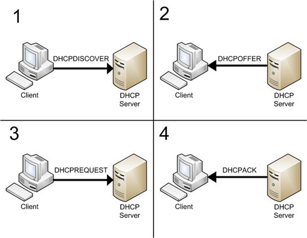 Выдача IP адресов DHCP сервером